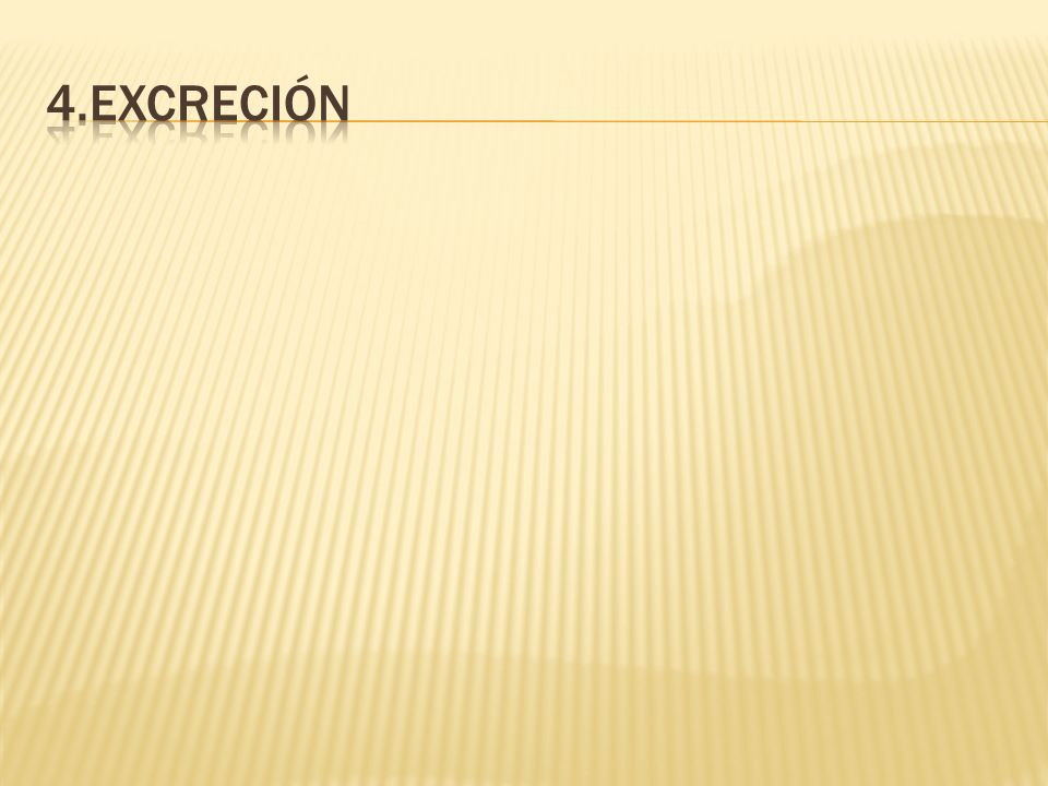 4.excreción