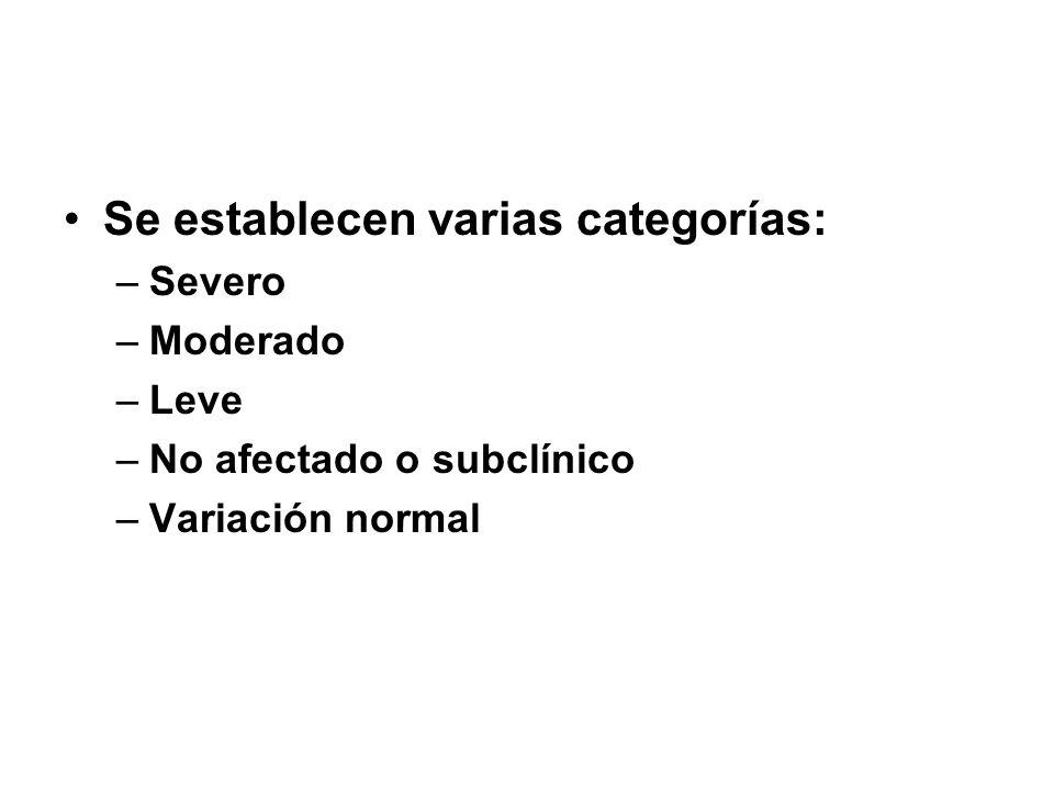 Se establecen varias categorías: