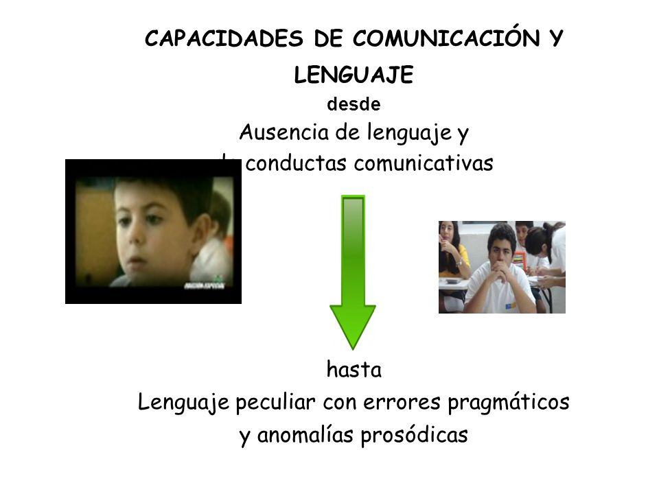 CAPACIDADES DE COMUNICACIÓN Y