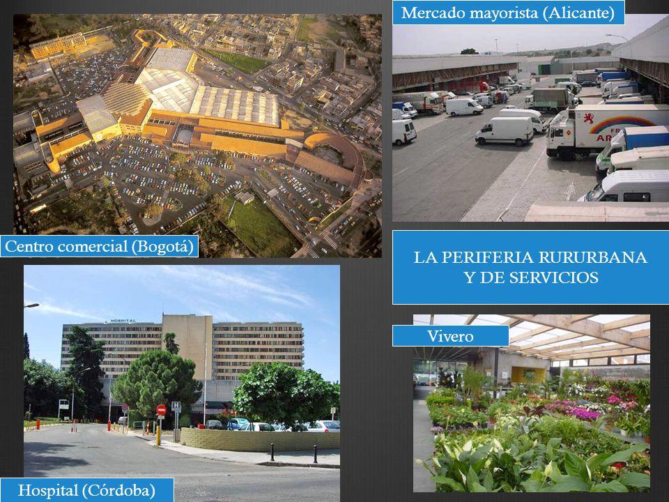 Mercado mayorista (Alicante)