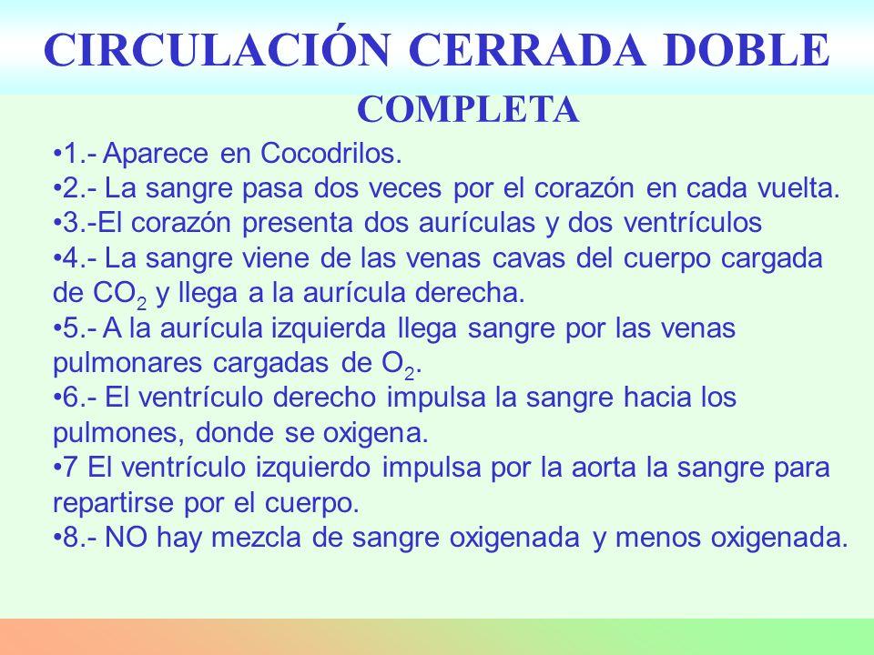 CIRCULACIÓN CERRADA DOBLE