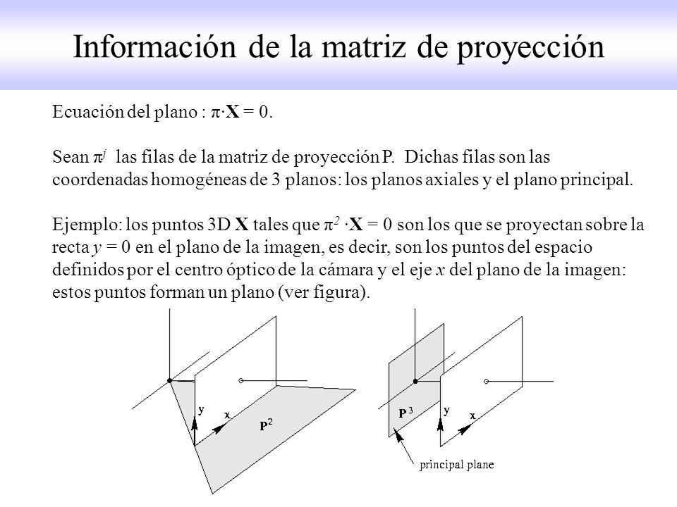 Información de la matriz de proyección