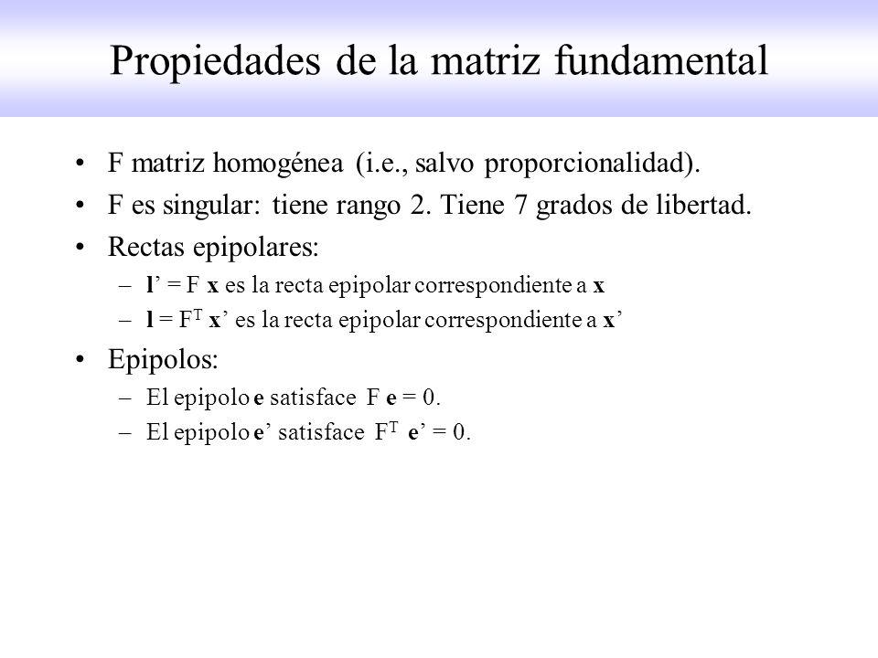 Propiedades de la matriz fundamental