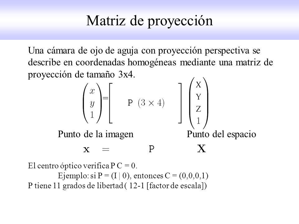 Matriz de proyección