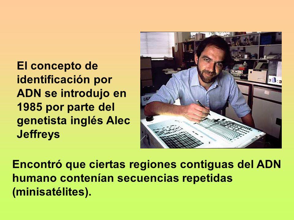 El concepto de identificación por ADN se introdujo en 1985 por parte del genetista inglés Alec Jeffreys