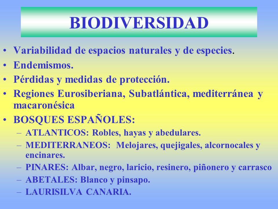 BIODIVERSIDAD Variabilidad de espacios naturales y de especies.