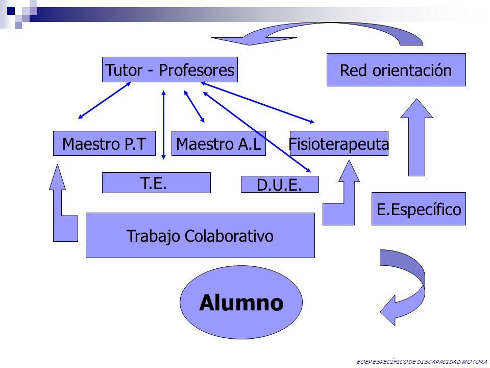Red orientación Tutor - Profesores Maestro P.T Maestro A.L