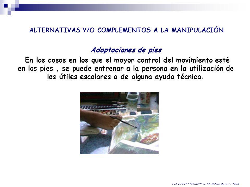 ALTERNATIVAS Y/O COMPLEMENTOS A LA MANIPULACIÓN