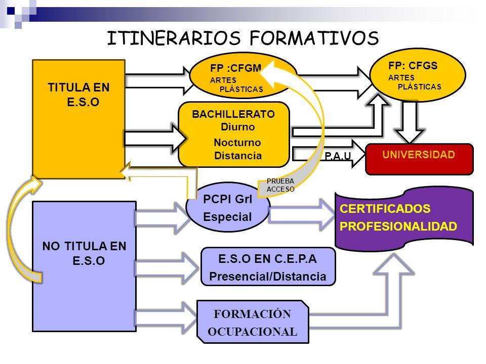 ITINERARIOS FORMATIVOS