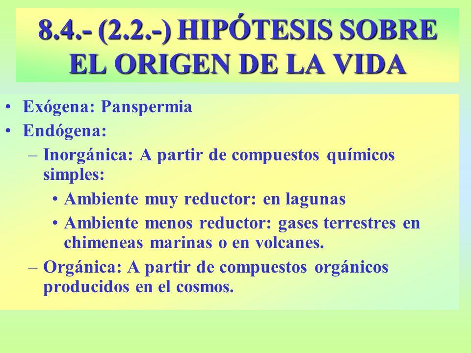 8.4.- (2.2.-) HIPÓTESIS SOBRE EL ORIGEN DE LA VIDA