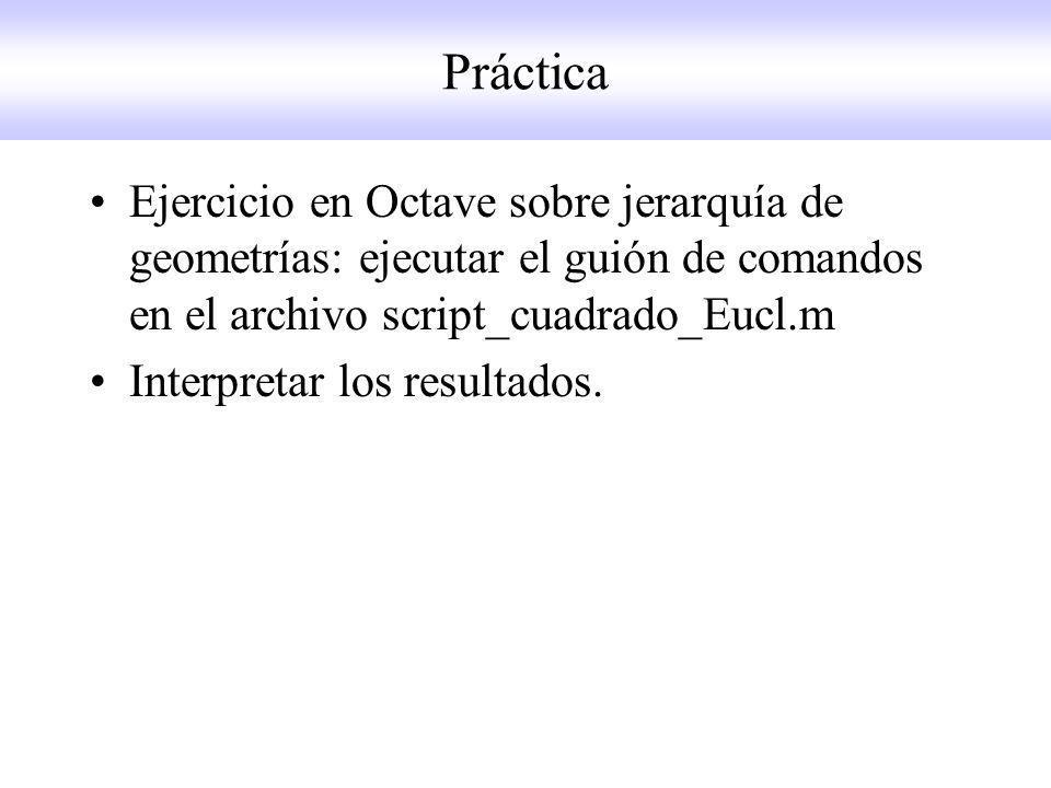 Práctica Ejercicio en Octave sobre jerarquía de geometrías: ejecutar el guión de comandos en el archivo script_cuadrado_Eucl.m.
