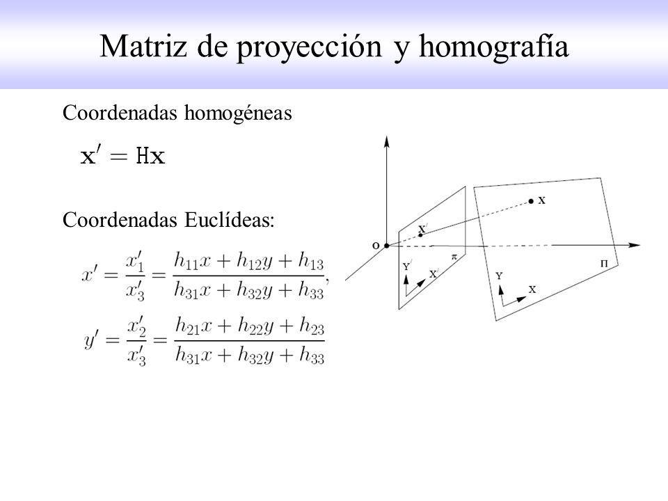Matriz de proyección y homografía