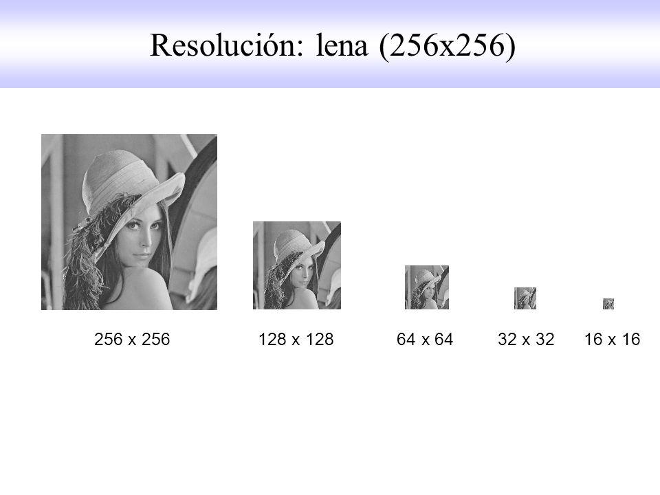 Resolución: lena (256x256) 256 x 256 128 x 128 64 x 64 32 x 32 16 x 16.