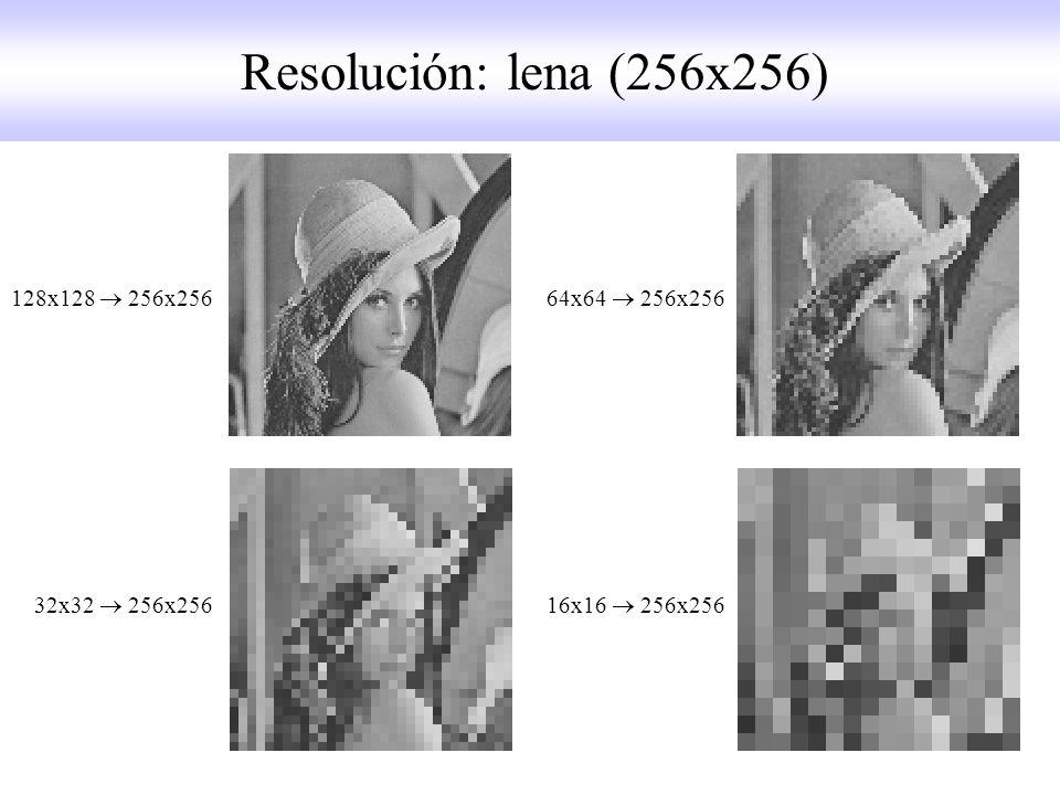 Resolución: lena (256x256) 128x128  256x256 64x64  256x256