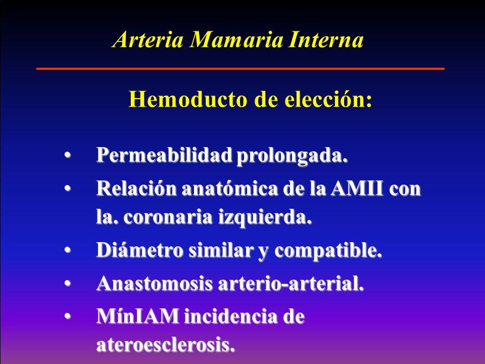 Arteria Mamaria Interna