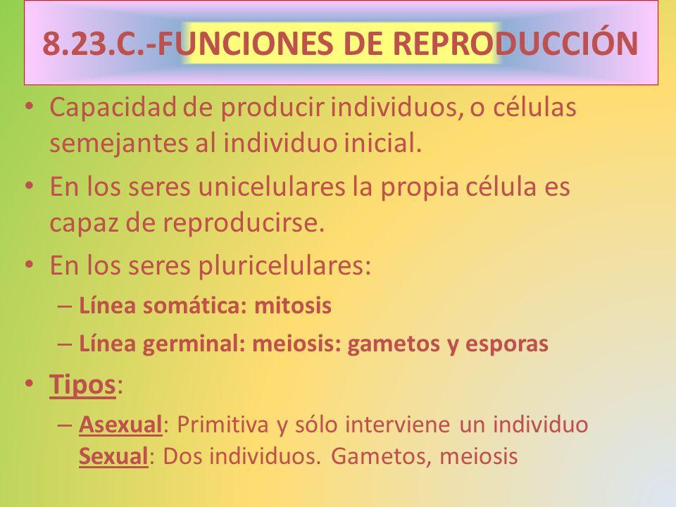 8.23.C.-FUNCIONES DE REPRODUCCIÓN