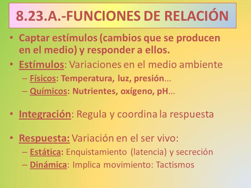 8.23.A.-FUNCIONES DE RELACIÓN