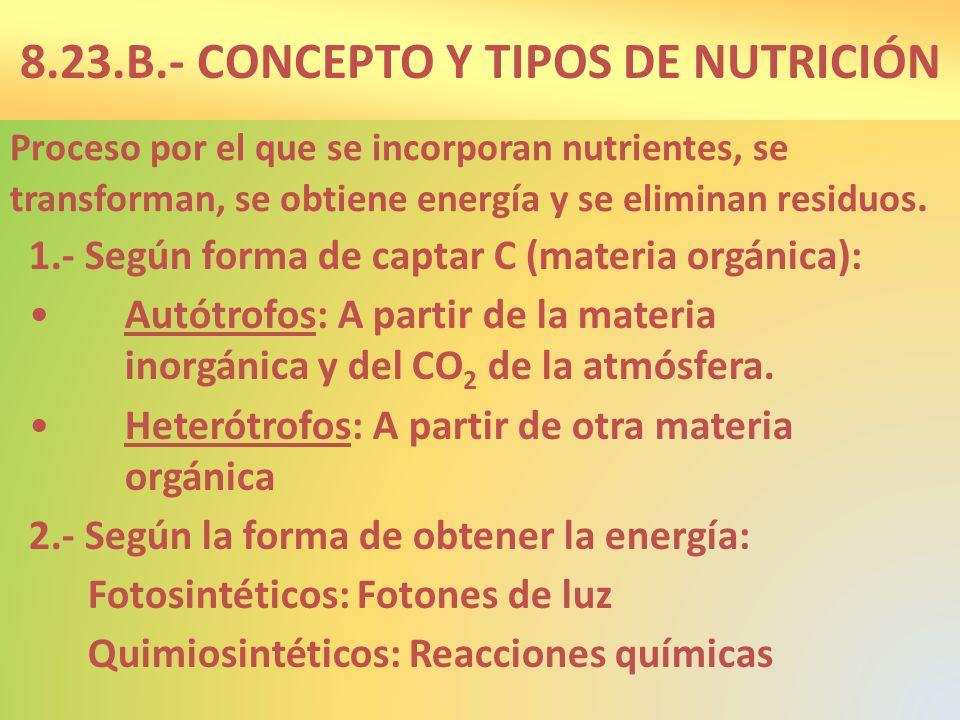 8.23.B.- CONCEPTO Y TIPOS DE NUTRICIÓN