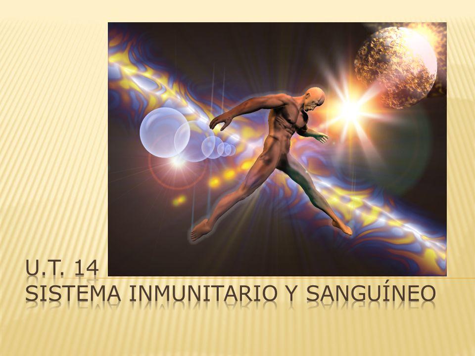 u.t. 14 sistema inmunitario y sanguíneo