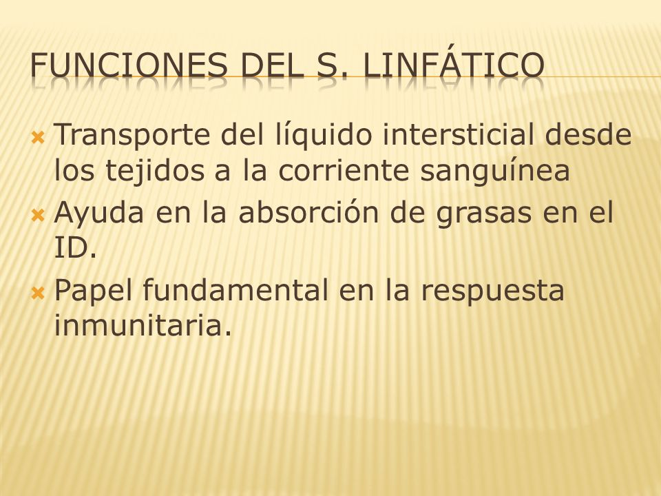 FUNCIONES DEL S. LINFÁTICO