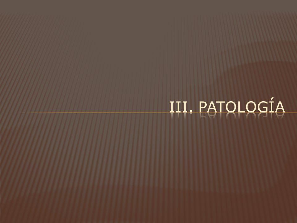 Iii. patología