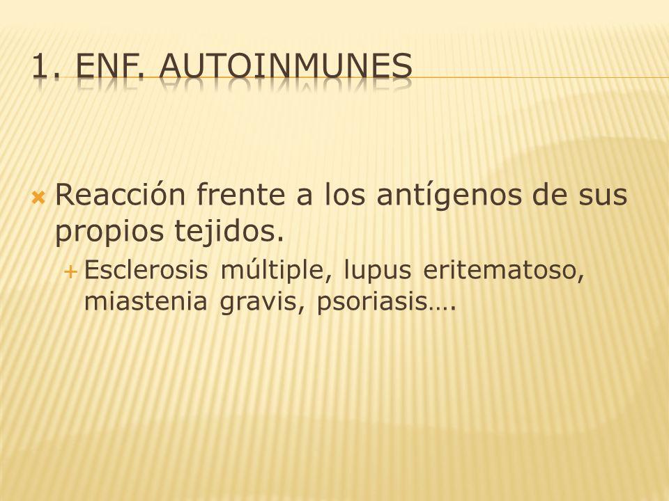 1. enf. autoinmunes Reacción frente a los antígenos de sus propios tejidos.