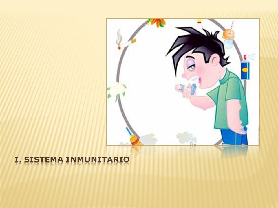 i. Sistema inmunitario