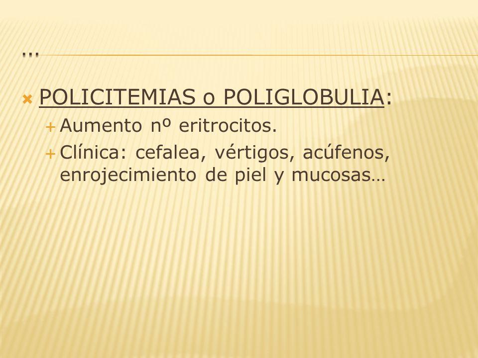 … POLICITEMIAS o POLIGLOBULIA: Aumento nº eritrocitos.