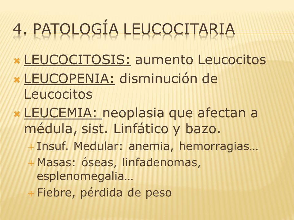4. PATOLOGÍA LEUCOCITARIA