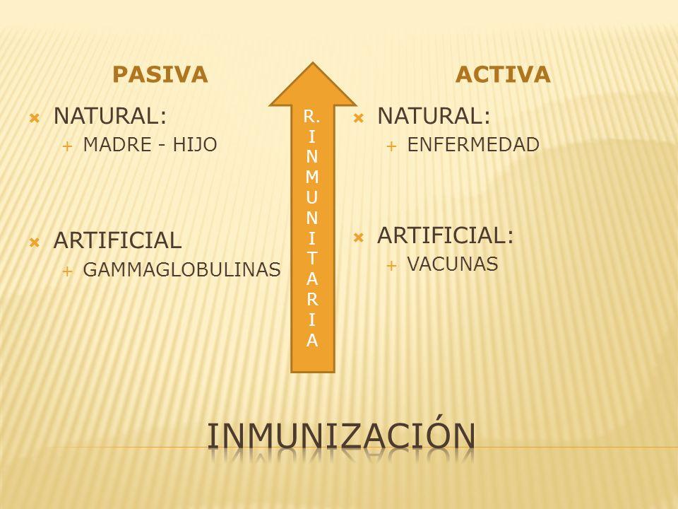inmunización PASIVA ACTIVA NATURAL: ARTIFICIAL NATURAL: ARTIFICIAL: