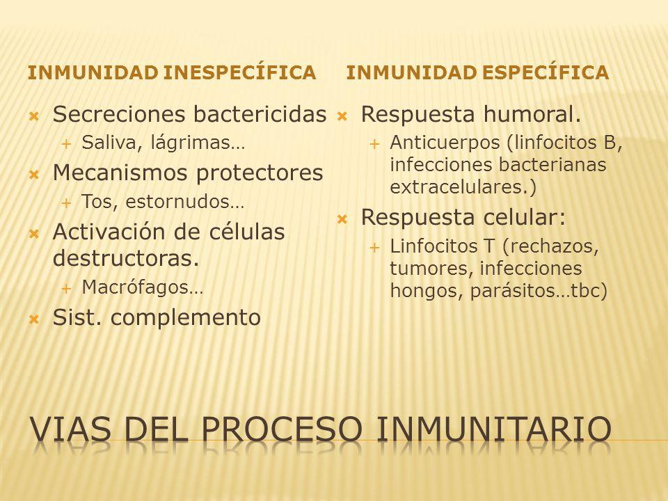 Vias del proceso inmunitario