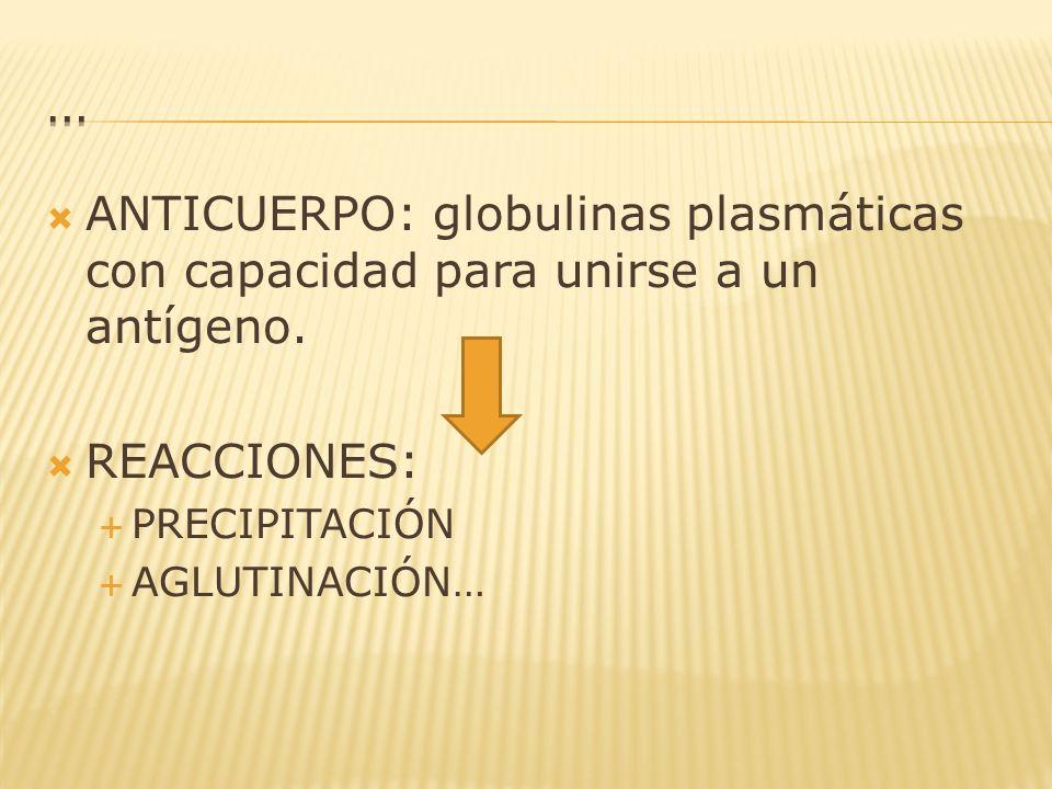 … ANTICUERPO: globulinas plasmáticas con capacidad para unirse a un antígeno. REACCIONES: PRECIPITACIÓN.