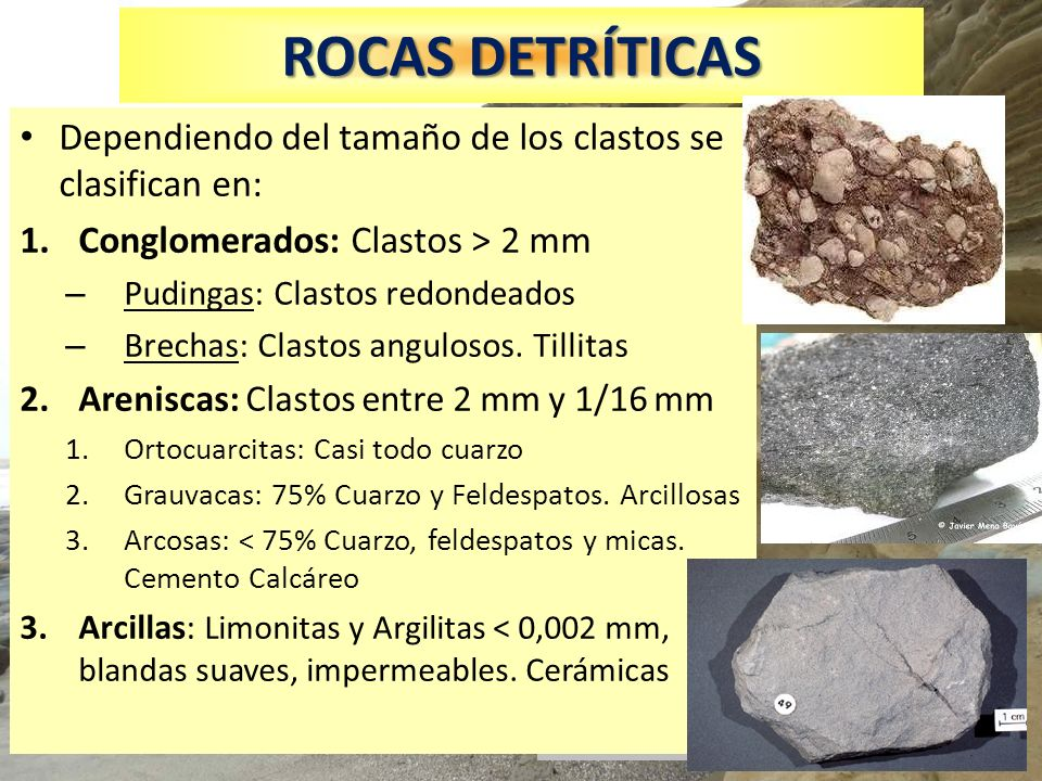 ROCAS DETRÍTICAS Dependiendo del tamaño de los clastos se clasifican en: Conglomerados: Clastos > 2 mm.