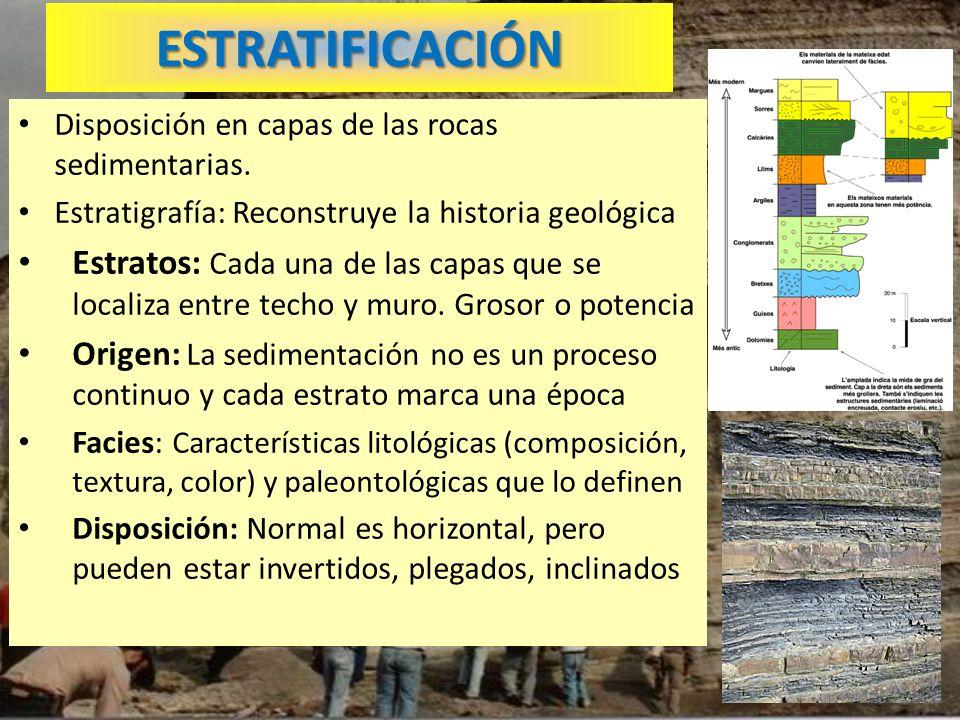 ESTRATIFICACIÓN Disposición en capas de las rocas sedimentarias. Estratigrafía: Reconstruye la historia geológica.