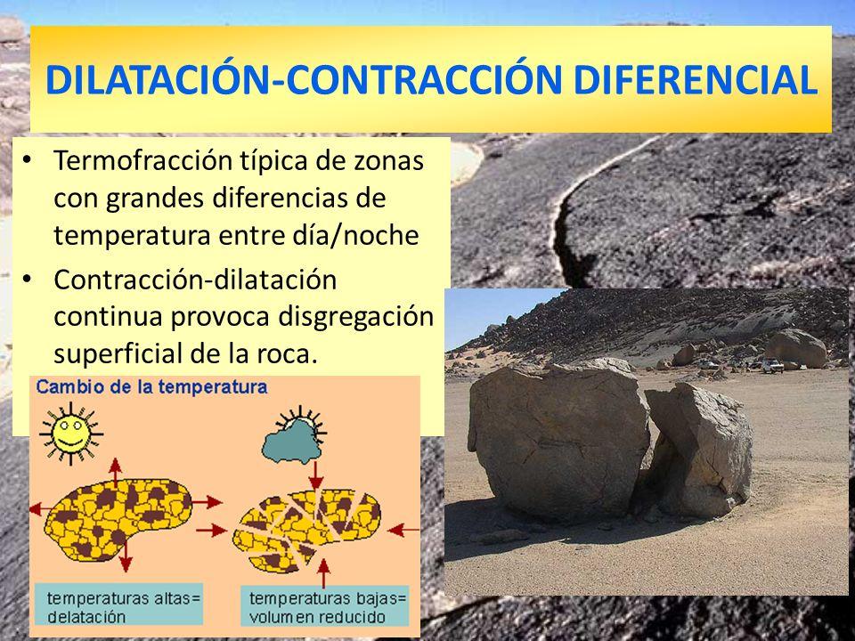 DILATACIÓN-CONTRACCIÓN DIFERENCIAL