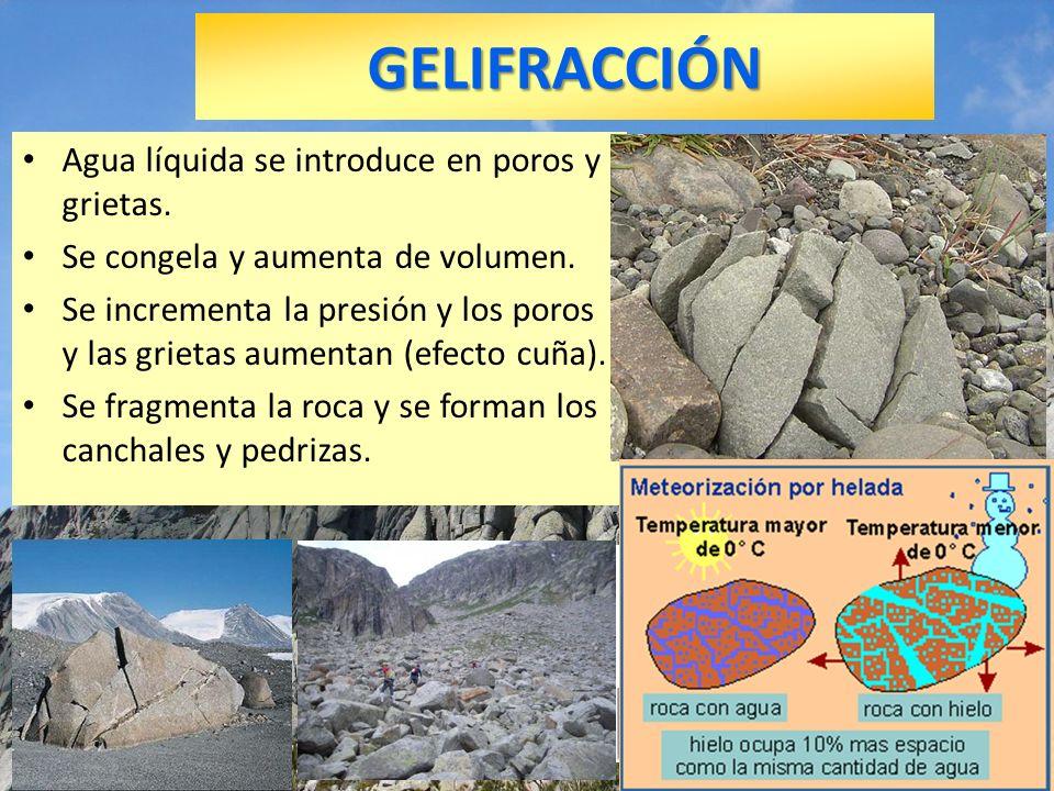 GELIFRACCIÓN Agua líquida se introduce en poros y grietas.