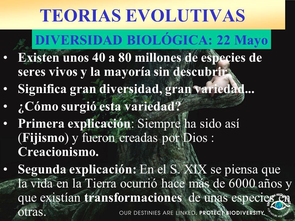TEORIAS EVOLUTIVAS DIVERSIDAD BIOLÓGICA: 22 Mayo