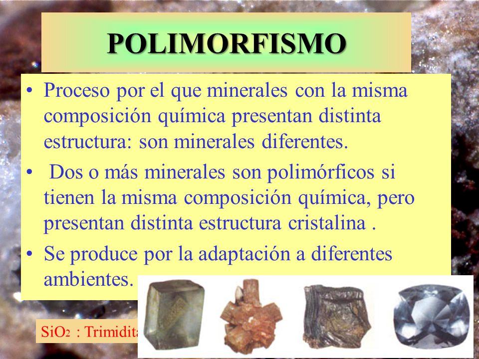 POLIMORFISMO Proceso por el que minerales con la misma composición química presentan distinta estructura: son minerales diferentes.