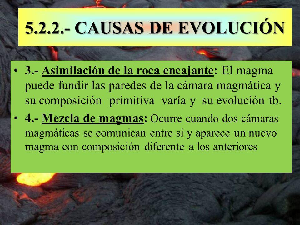 5.2.2.- CAUSAS DE EVOLUCIÓN
