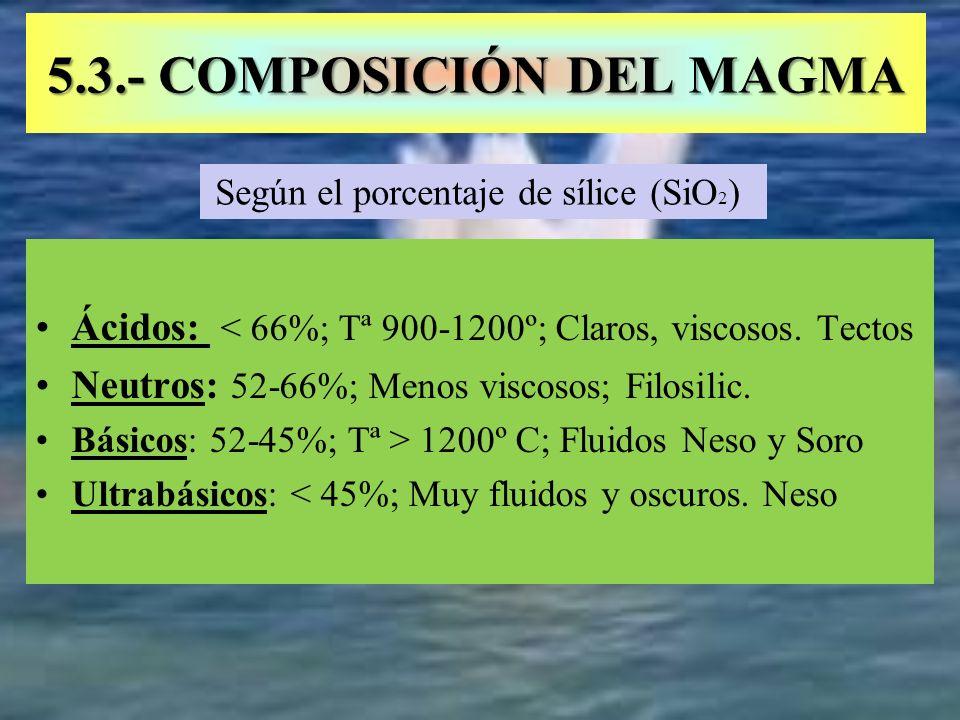 5.3.- COMPOSICIÓN DEL MAGMA