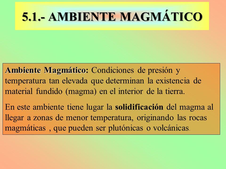 5.1.- AMBIENTE MAGMÁTICO