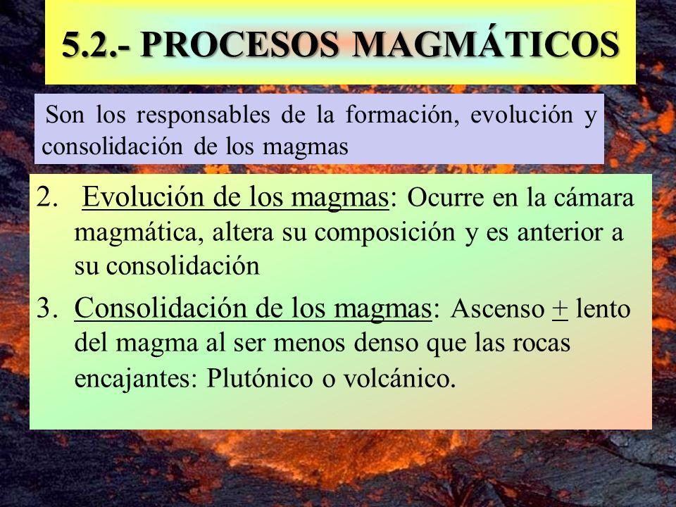 5.2.- PROCESOS MAGMÁTICOS Son los responsables de la formación, evolución y consolidación de los magmas.