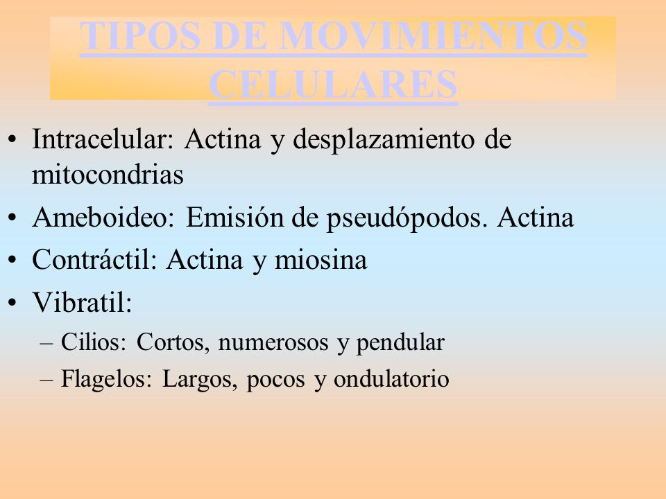 TIPOS DE MOVIMIENTOS CELULARES
