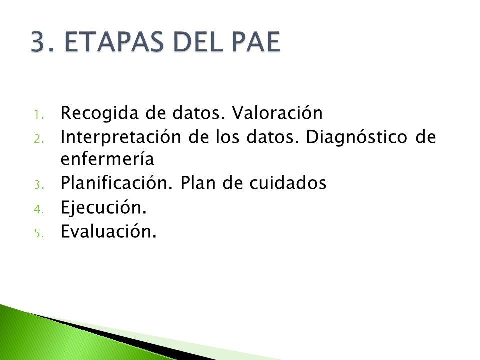 3. ETAPAS DEL PAE Recogida de datos. Valoración