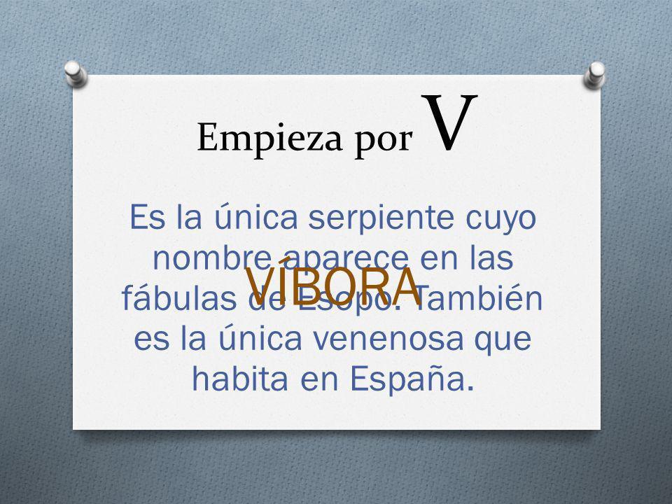 Empieza por V Es la única serpiente cuyo nombre aparece en las fábulas de Esopo. También es la única venenosa que habita en España.