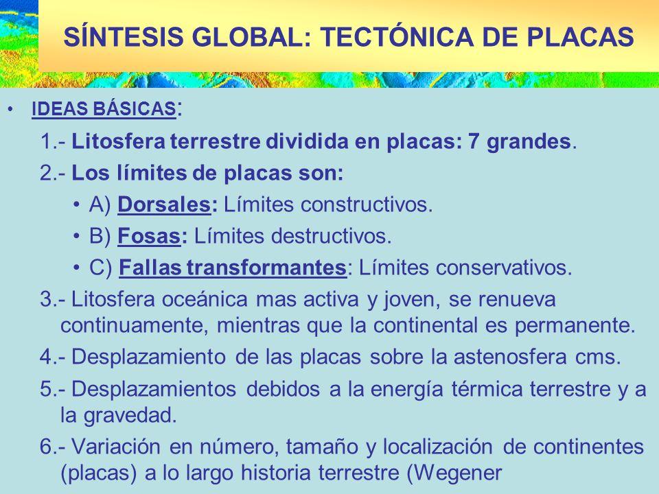 SÍNTESIS GLOBAL: TECTÓNICA DE PLACAS