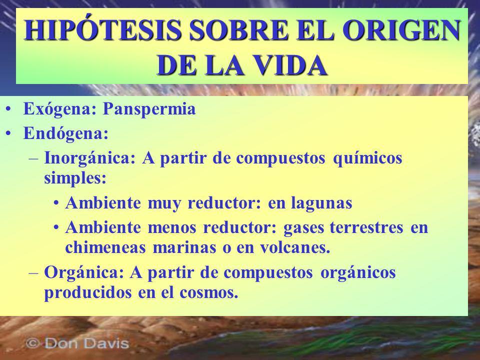 HIPÓTESIS SOBRE EL ORIGEN DE LA VIDA