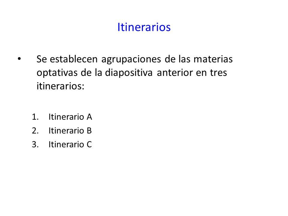 Itinerarios Se establecen agrupaciones de las materias optativas de la diapositiva anterior en tres itinerarios:
