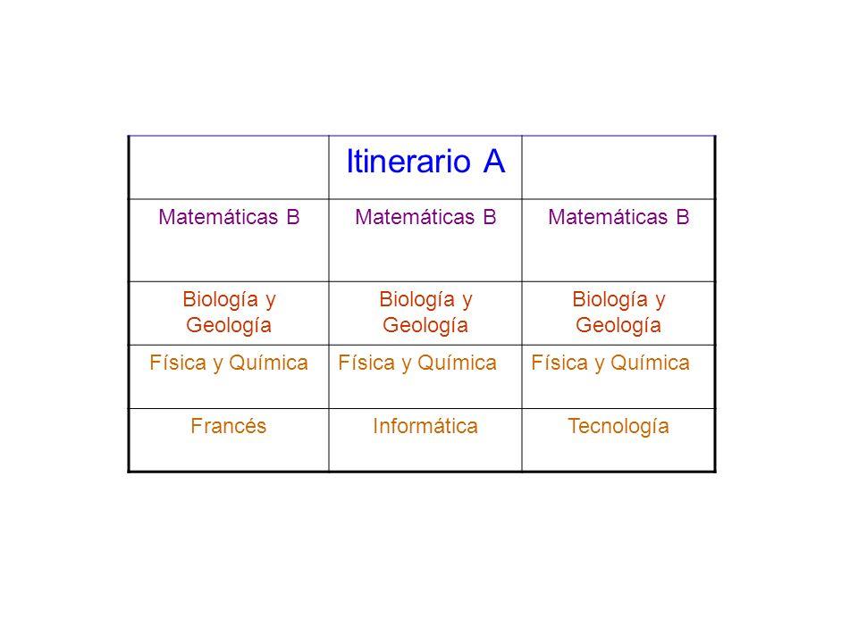 Itinerario A Matemáticas B Biología y Geología Física y Química