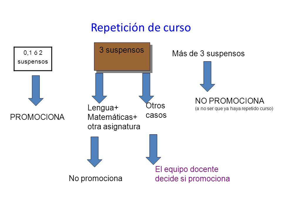 Repetición de curso 3 suspensos Más de 3 suspensos NO PROMOCIONA Otros